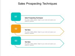 Sales Prospecting Techniques Ppt Powerpoint Presentation Ideas Inspiration Cpb