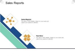 Sales Reports Ppt Powerpoint Presentation Infographic Template Structure Cpb
