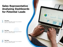 Sales Representative Analysing Dashboards For Potential Leads