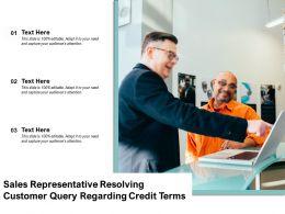 Sales Representative Resolving Customer Query Regarding Credit Terms
