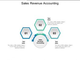 Sales Revenue Accounting Ppt Presentation Summary Portrait Cpb