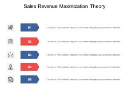 Sales Revenue Maximization Theory Ppt Powerpoint Presentation Slides Cpb