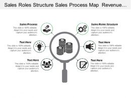 Sales Roles Structure Sales Process Map Revenue Growth