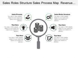 Sales Roles Structure Sales Process Map Revenue Growth