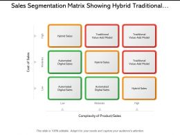 Sales Segmentation Matrix Showing Hybrid Traditional And Automated Sales