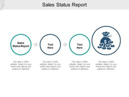 Sales Status Report Ppt Powerpoint Presentation File Slideshow Cpb