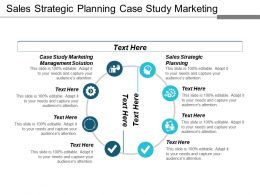 Sales Strategic Planning Case Study Marketing Management Solution Cpb
