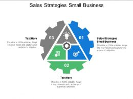 Sales Strategies Small Business Ppt Powerpoint Presentation Icon Graphics Pictures Cpb