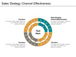 Sales Strategy Channel Effectiveness Ppt Powerpoint Presentation Inspiration Layouts Cpb