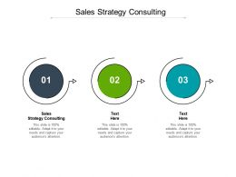 Sales Strategy Consulting Ppt Powerpoint Presentation Portfolio Structure Cpb