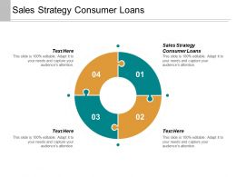Sales Strategy Consumer Loans Ppt Powerpoint Presentation Layouts Visuals Cpb