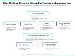 Sales Strategy Covering Messaging Process And Management Execution Ppt Topics