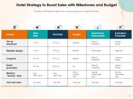 Sales Strategy Hotels Analyst Executing Digital Marketing Segments Maturity Budget