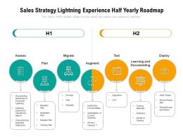 Sales Strategy Lightning Experience Half Yearly Roadmap