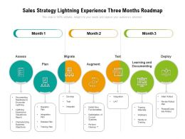 Sales Strategy Lightning Experience Three Months Roadmap