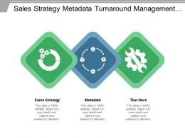 Sales Strategy Metadata Turnaround Management Retail Strategy Sales Planning Cpb
