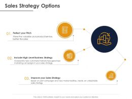 Sales Strategy Options Ppt Powerpoint Presentation File Clipart Images