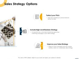 Sales Strategy Options Ppt Powerpoint Presentation Pictures Graphics