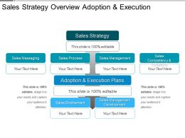 Sales Strategy Overview Adoption And Execution Ppt Summary