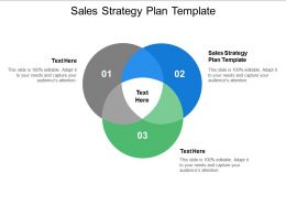 Sales Strategy Plan Template Ppt Powerpoint Presentation Professional Deck Cpb