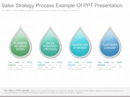 Sales Strategy Process Example Of Ppt Presentation