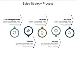 Sales Strategy Process Ppt Powerpoint Presentation Icon Gallery Cpb