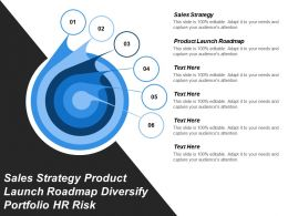 Sales Strategy Product Launch Roadmap Diversify Portfolio Hr Risk Cpb
