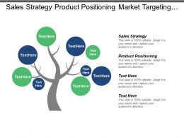 Sales Strategy Product Positioning Market Targeting Strategies Positioning Strategy Cpb