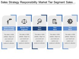 Sales Strategy Responsibility Market Tier Segment Sales Dimension
