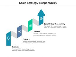 Sales Strategy Responsibility Ppt Powerpoint Presentation File Graphics Cpb