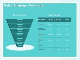Sales Strategy Summary Profit Margin Ppt Powerpoint Presentation Visual Aids
