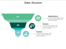 Sales Structure Ppt Powerpoint Presentation Backgrounds Cpb