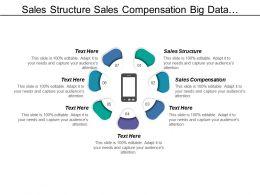 Sales Structure Sales Compensation Big Data Analytics Networking