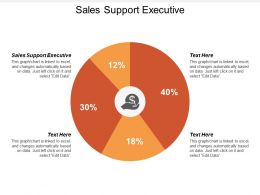 Sales Support Executive Ppt Powerpoint Presentation Infographics Template Cpb