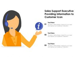 Sales Support Executive Providing Information To Customer Icon