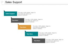 Sales Support Ppt Powerpoint Presentation Portfolio Guide Cpb