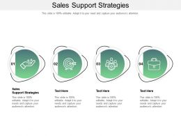 Sales Support Strategies Ppt Powerpoint Presentation Inspiration Vector Cpb
