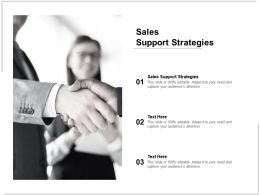 Sales Support Strategies Ppt Powerpoint Presentation Show Tips Cpb