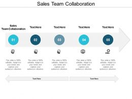 Sales Team Collaboration Ppt Powerpoint Presentation Gallery Portfolio Cpb