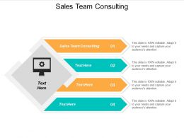Sales Team Consulting Ppt Powerpoint Presentation Styles Format Cpb