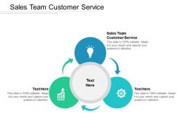 Sales Team Customer Service Ppt Powerpoint Presentation Ideas Cpb