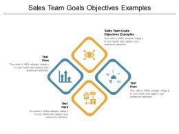 Sales Team Goals Objectives Examples Ppt Powerpoint Presentation Pictures Clipart Cpb