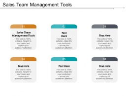 Sales Team Management Tools Ppt Powerpoint Presentation Gallery Aids Cpb