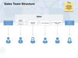 Sales Team Structure Customer Ppt Powerpoint Presentation Gallery Ideas
