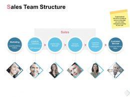 Sales Team Structure Marketing Ppt Powerpoint Presentation Slides