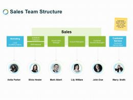 Sales Team Structure Ppt Powerpoint Presentation Gallery Example File