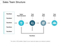 Sales Team Structure Ppt Powerpoint Presentation Information Cpb