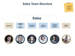 Sales Team Structure Ppt Powerpoint Presentation Outline Infographic Template