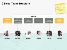 Sales Team Structure Ppt Powerpoint Presentation Summary Good