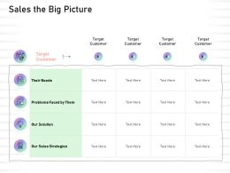Sales The Big Picture Problems Faced Them Ppt Powerpoint Presentation Icon